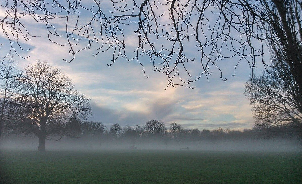 Misty morning in Victoria Park, Arthur and Marthas Dog Service