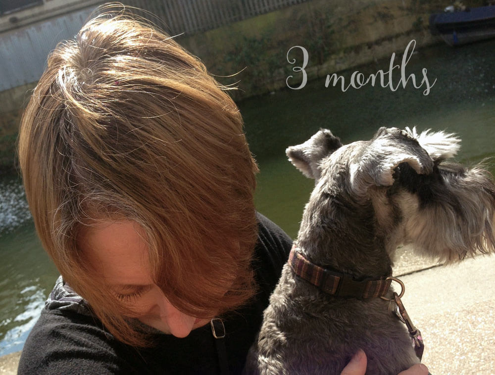 Growing out grey hair – 3 months