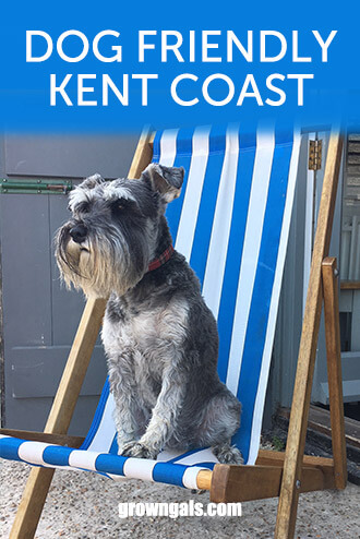 Dog friendly Kent