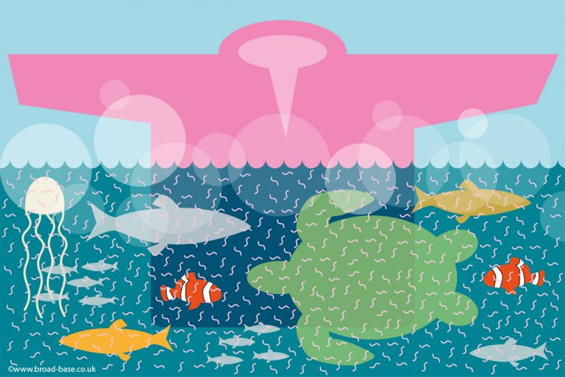 Sea Pollution – the oceans are being poisoned by our laundry